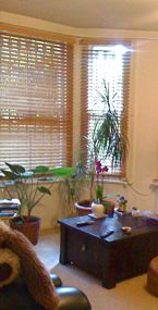 livng room, with window and plants